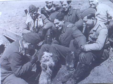 Die 8. Staffel des JG 52 am Kubanbrückenkopf 1943