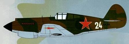 Curtiss P-40 Profil